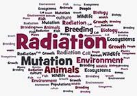 word cloud associated with the Radiation Biologist career path