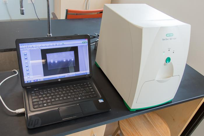 Gel imaging system